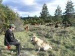 me and le troupeau